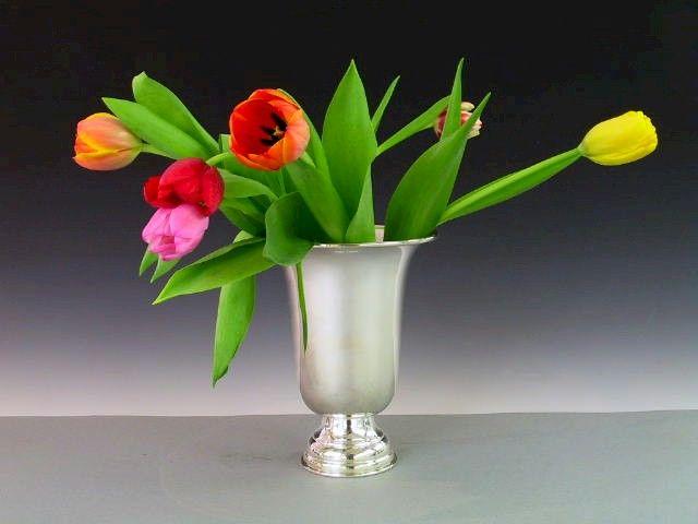 Vasen / Pokal