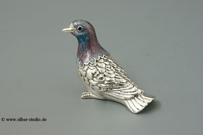 Silber Taube mittlere Größe