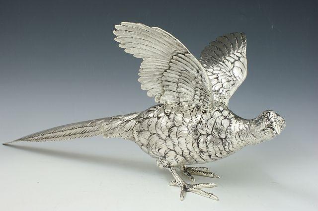 Silber Fasan Henne