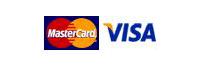 Mastercard Visa Logo
